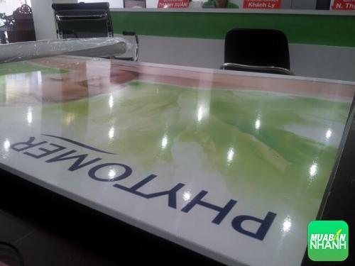 Đặt in giá rẻ in PP bồi formex 5 mm tại công ty Printing VietNam, 198, Mãnh Nhi, Chuyên trang cộng đồng In ấn và bao bì của MuaBanNhanh, 03/07/2013 00:03:08