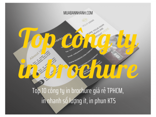 Top 10 công ty in brochure giá rẻ TPHCM, in nhanh số lượng ít, in phun KTS